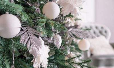 Make Your Home Holiday-Ready with These Top Electrical Safety Tips | Texas Electric Company